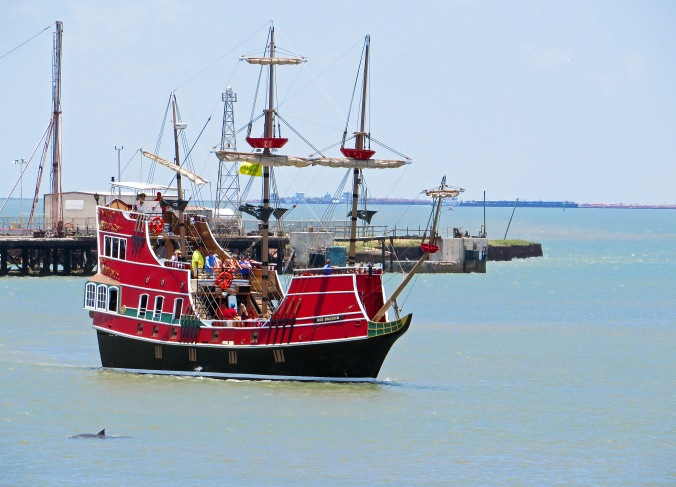 Pirate ship dolphin