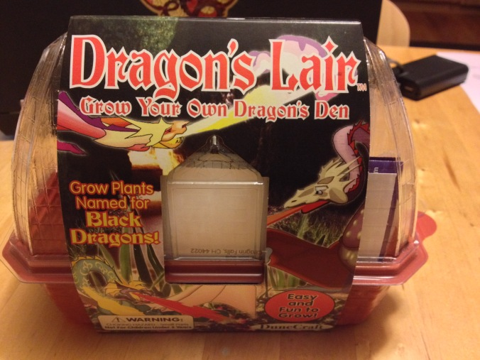 Dragon's Lair box side two