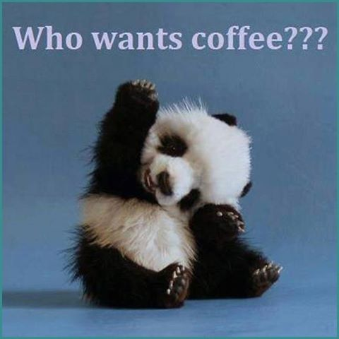 Who wants coffee panda