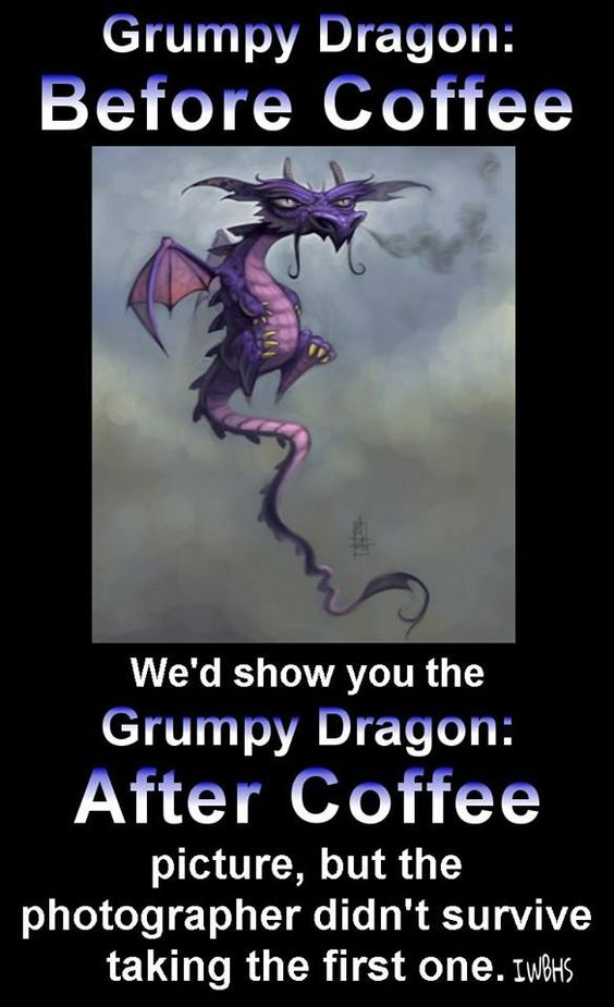 Grumpy Dragon
