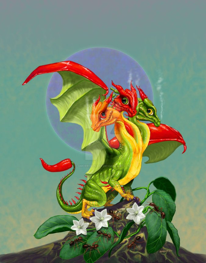 peppers_dragon_by_smorrisonart-d7kd80z