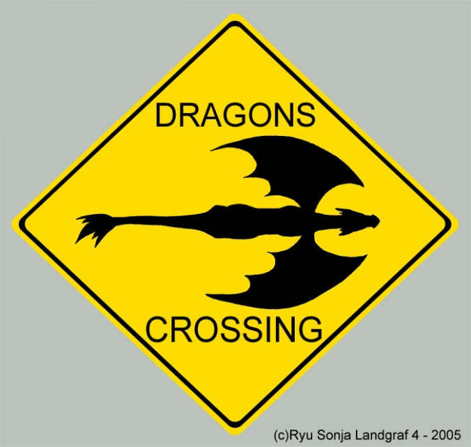 dragons_crossing_by_ryu_sonja